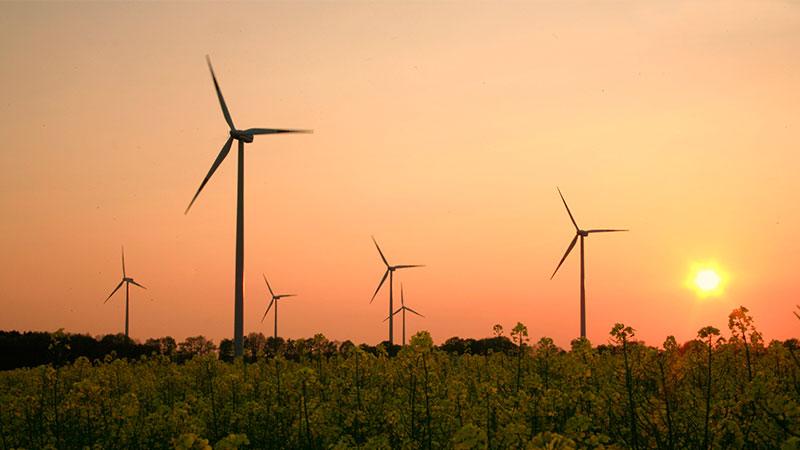 Beratung für erneuerbare Energien